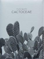 Cactoceae