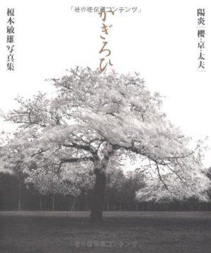 Kigirohi by Toshio Enomoto