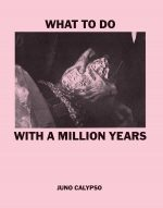 What To Do With A Million Years